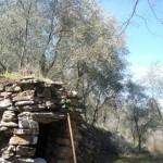 tipica casella ligure